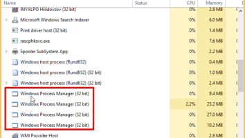 Windows Process Manager (32 bit)