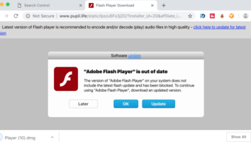 Pupil.life fake Flash Player Download alert