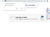 Videostay.site fake robot check